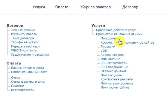 """Раздел """"Мои домены"""" в Nic.ru"""