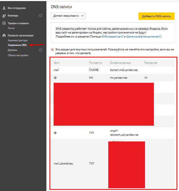 """Вкладка """"Управление DNS"""" в Яндекс.Коннекте"""