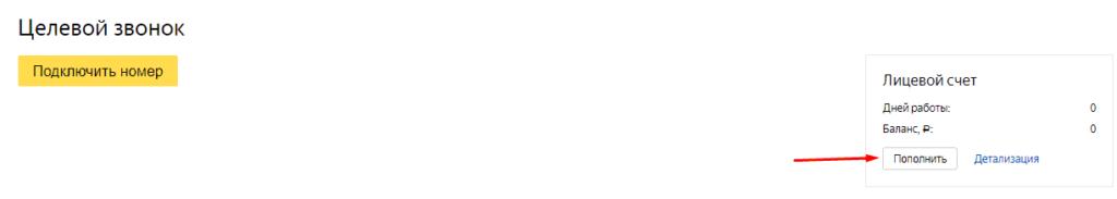 Пополнение баланса в Яндекс Целевой звонок 2.0