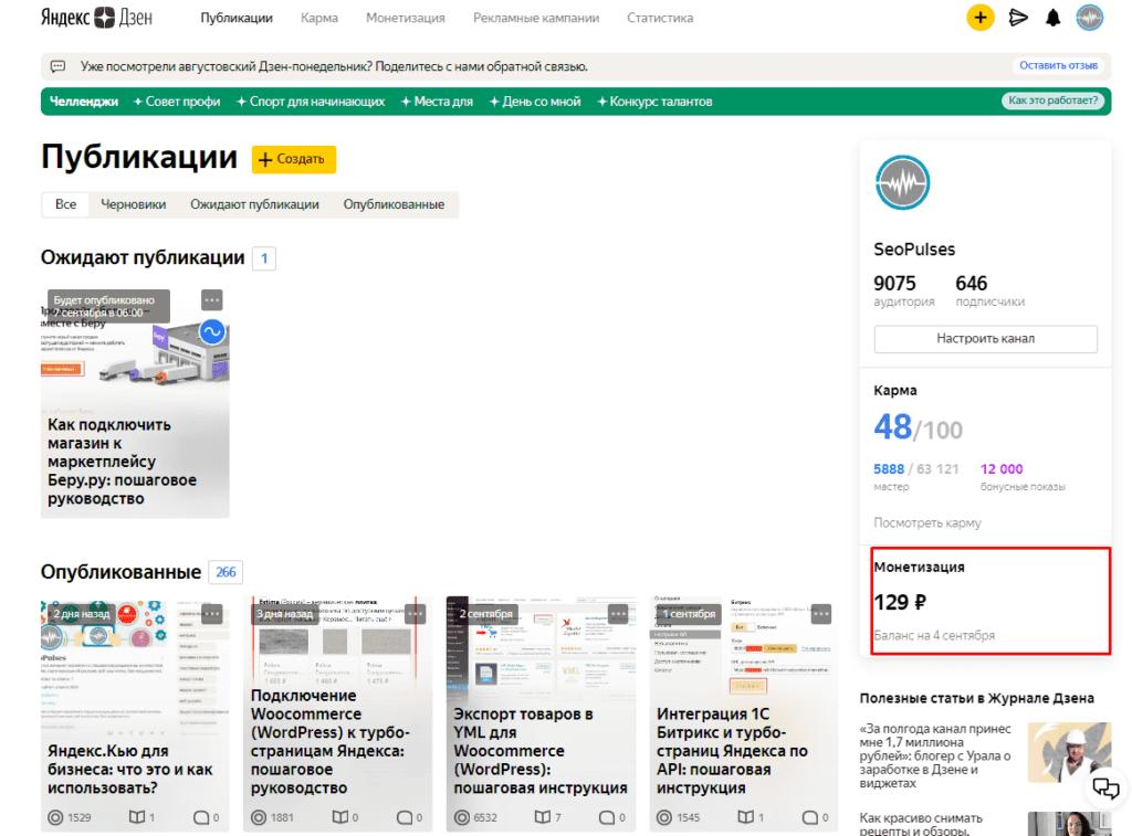 Права к просмотру монетизации в Яндекс.Дзен